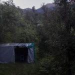 Jungle Lore : A Birding Lodge !